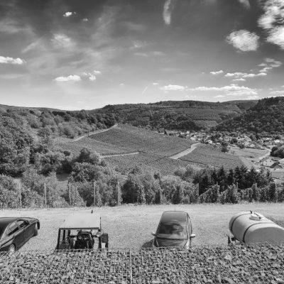 Weingut Schloß Saarstein mit Blick auf den Serriger Antoniusberg
