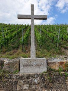 Das neue Weingesetz - Mogelpackung oder Stellung von Weichen für die Zukunft? 2