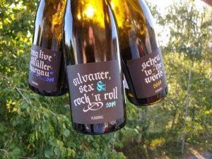 Neu auf unserem Radar: Das Weingut Ottenbreit aus Obernbreit in Franken