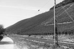 Der Kanzemer Altenberg