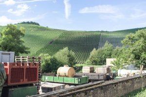 Großlage, Lage, Gewann, VDP.Große Lage, VDP.Erste Lage, geschützte Ursprungsbezeichnungen der EU – droht das Bezeichnungschaos bei deutschen Weinen? 3