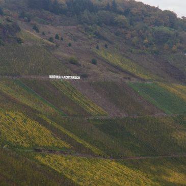 Weingesetz, VDP, geschützte Ursprungsbezeichnungen der EU – droht das Lagenchaos bei deutschen Weinen?