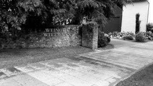 Weingut Wittmann Westhofen