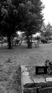 Regen im schönen Garten von K. F. Groebe